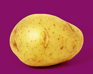 сладък картоф