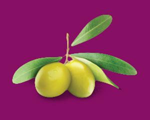 зелена маслина